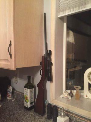 gun-on-the-counter